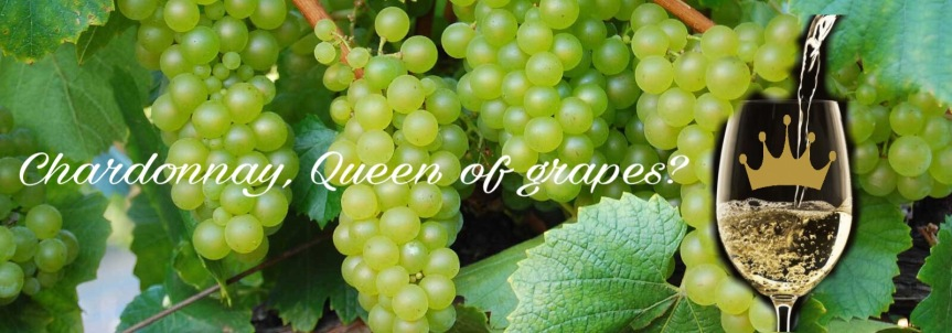 Chardonnay, Queen of grapes?