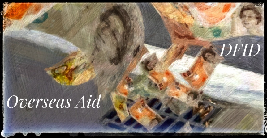 Foreign Aid: Cash or Skills?