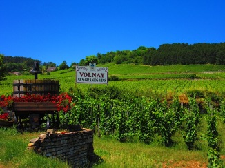Volnay vineyards, Burgundy