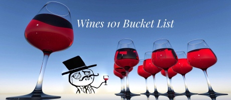 Wines 101 Bucket List for wine tasting and wine travel