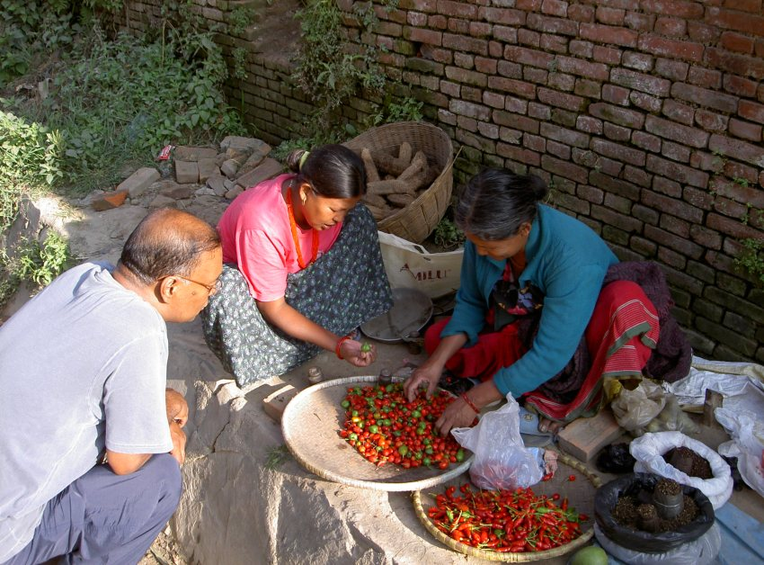 Two ladies selling chillies in Kathmandu on a dusty street